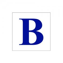 B Camera ID